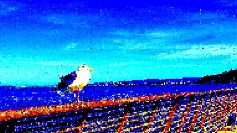 Pixelated photo of seagull at Pier 14, San Francisco